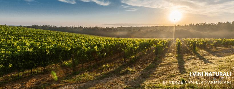 I vini naturali